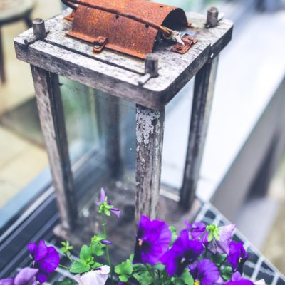 5 Ways to Add Color to Your Outdoor Space